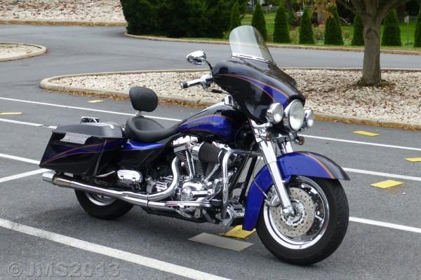 HarleyPurple-1